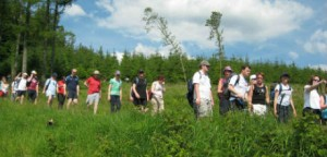 Slieve Bloom Walking Festival